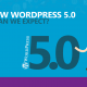 The New Wordpress 5.0 what can we expect